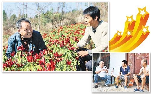[中国梦实践者]河南三门峡市四龙庙村党支部