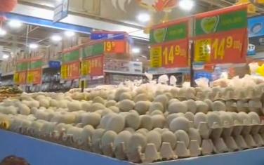 辽宁省鞍山市鸡蛋批发商 盛经理:咱从超市里买走的不论是红蛋,土