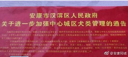 """陜西安康回應""""養犬通告20處錯誤"""":疑制作時出錯,正調查"""