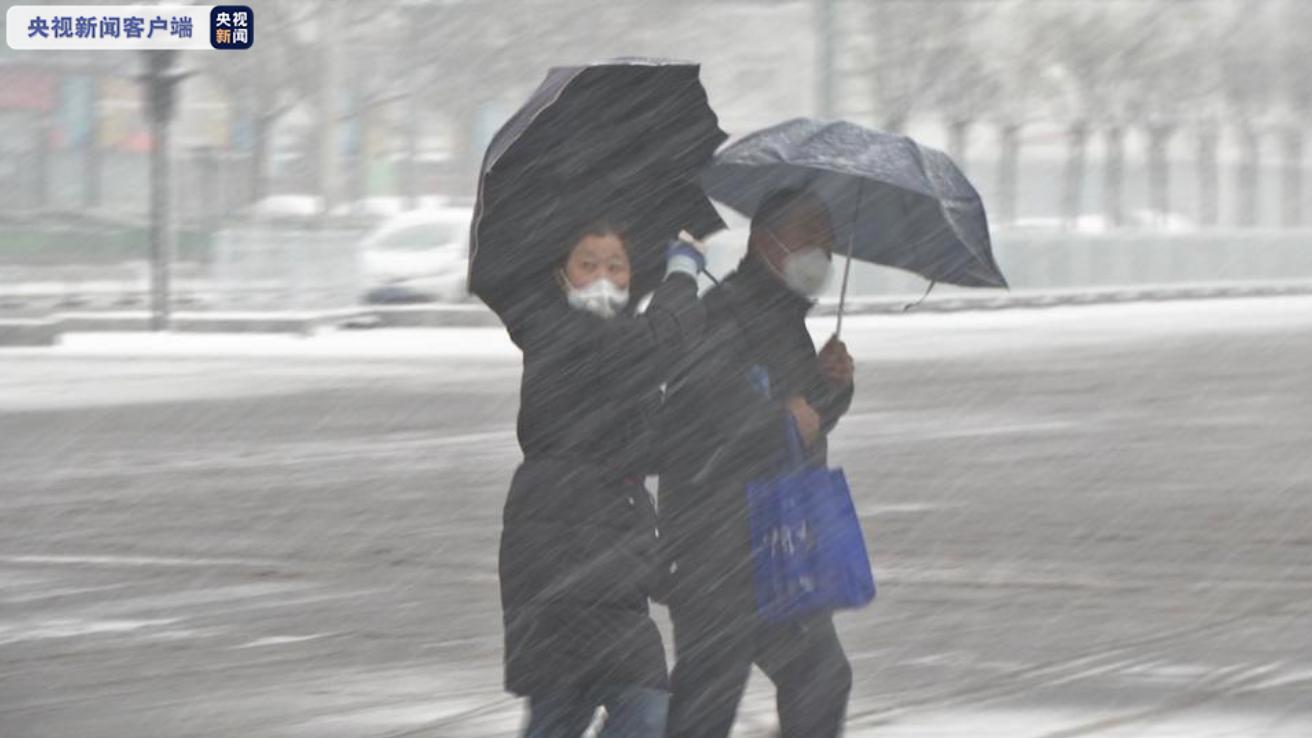 四预警连发 天津迎来大风大雪大降温
