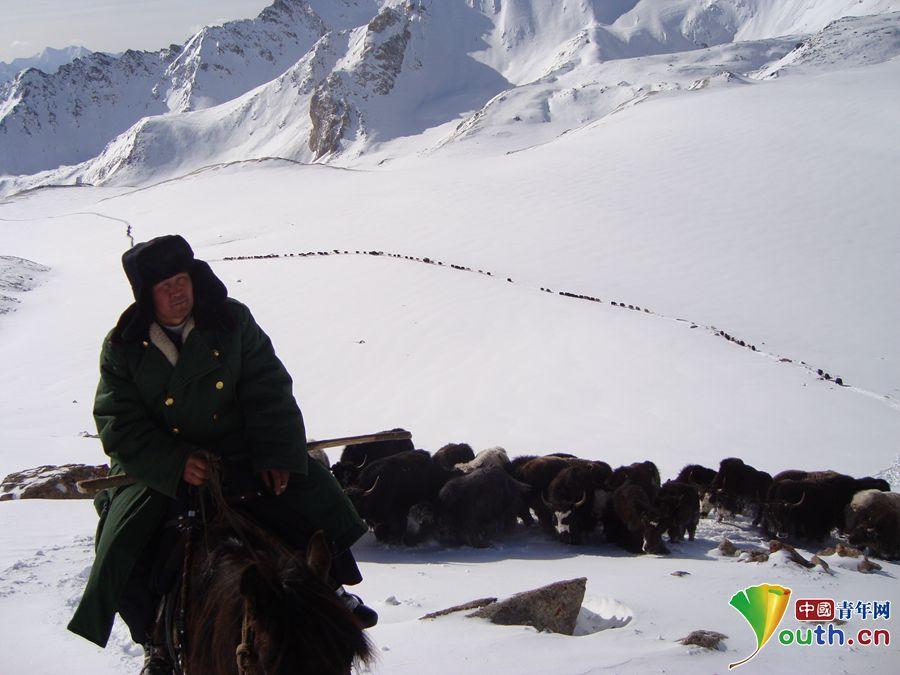 努尔江走在转场牲畜队伍前面,踏雪翻越冰大坂。资料图