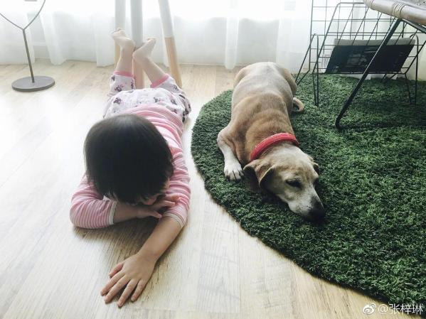 组图:张梓琳分享女儿日常 胖妹弹钢琴模样乖巧背影软萌