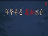 31.国家级非物质文化遗产代表性传承人抢救性记录工作成果展映月.png