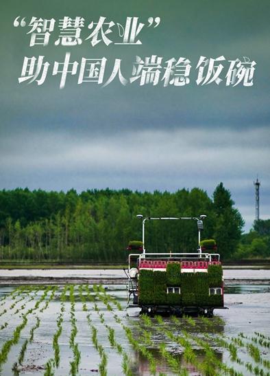"""""""智慧农业""""助中国人端稳饭碗.jpg"""